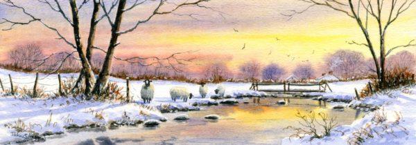 Winter Glow Print (LNG030)